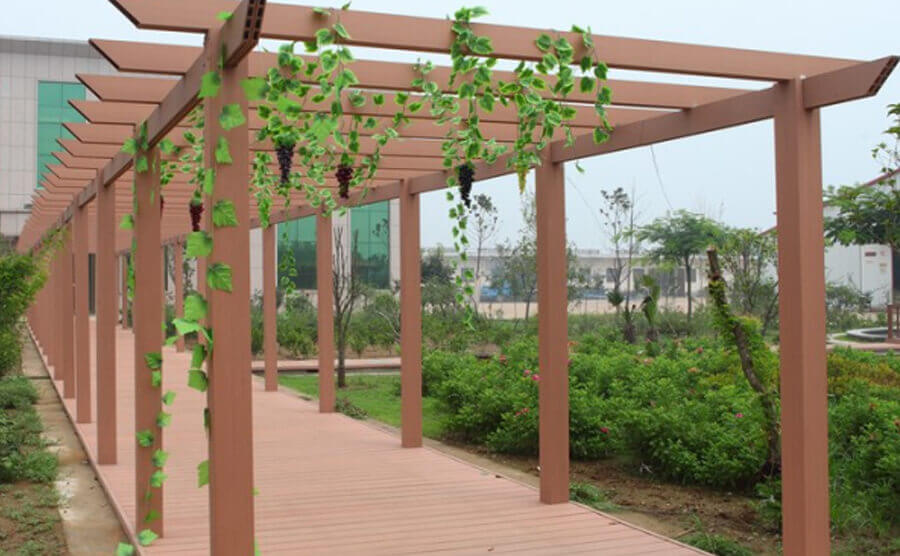 Pergola guides the plant climbing display